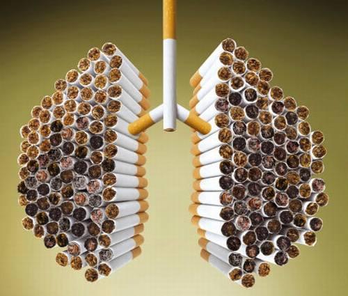 jak rzucić palenie - płuca